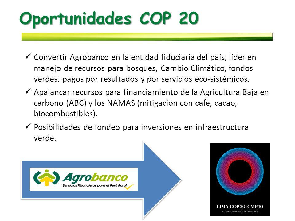 Oportunidades COP 20