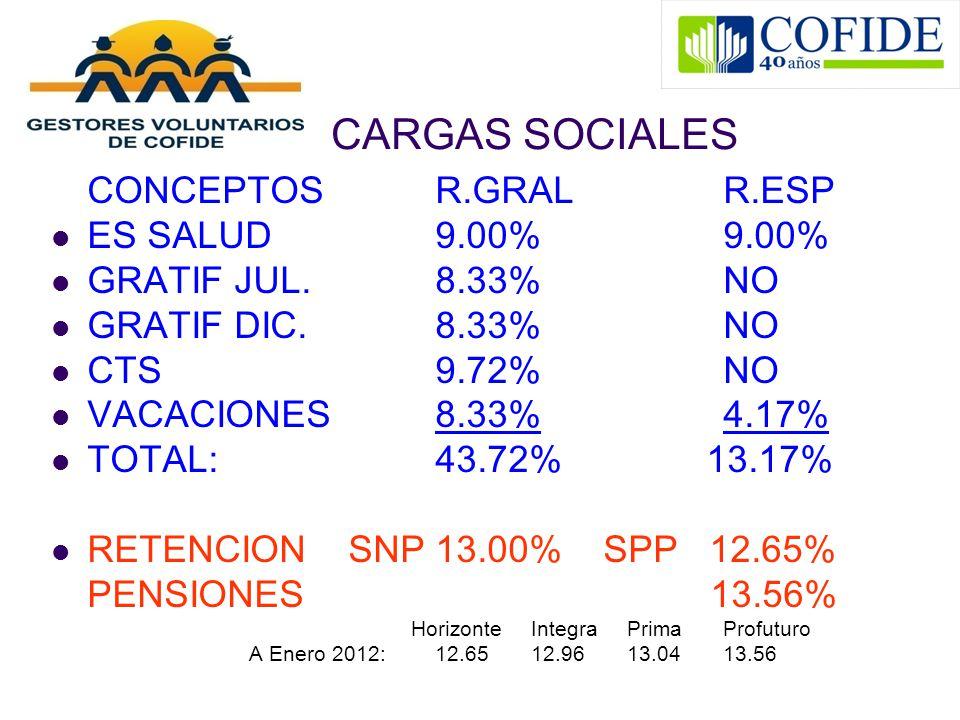 CARGAS SOCIALES ES SALUD 9.00% 9.00% GRATIF JUL. 8.33% NO