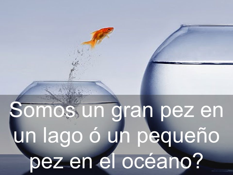 Somos un gran pez en un lago ó un pequeño pez en el océano