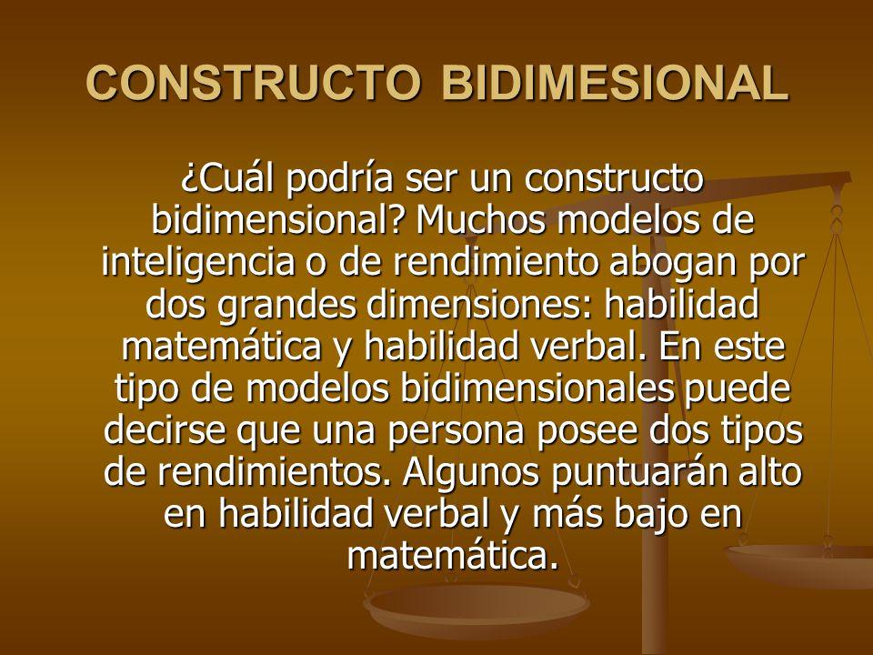 CONSTRUCTO BIDIMESIONAL