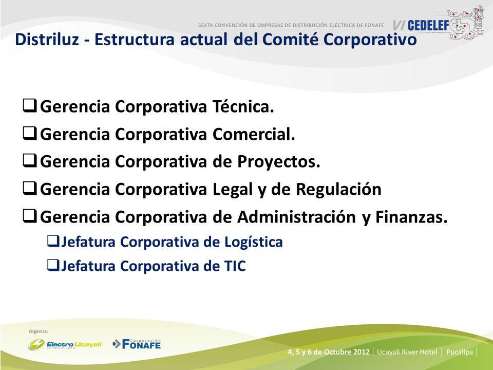Distriluz - Estructura actual del Comité Corporativo