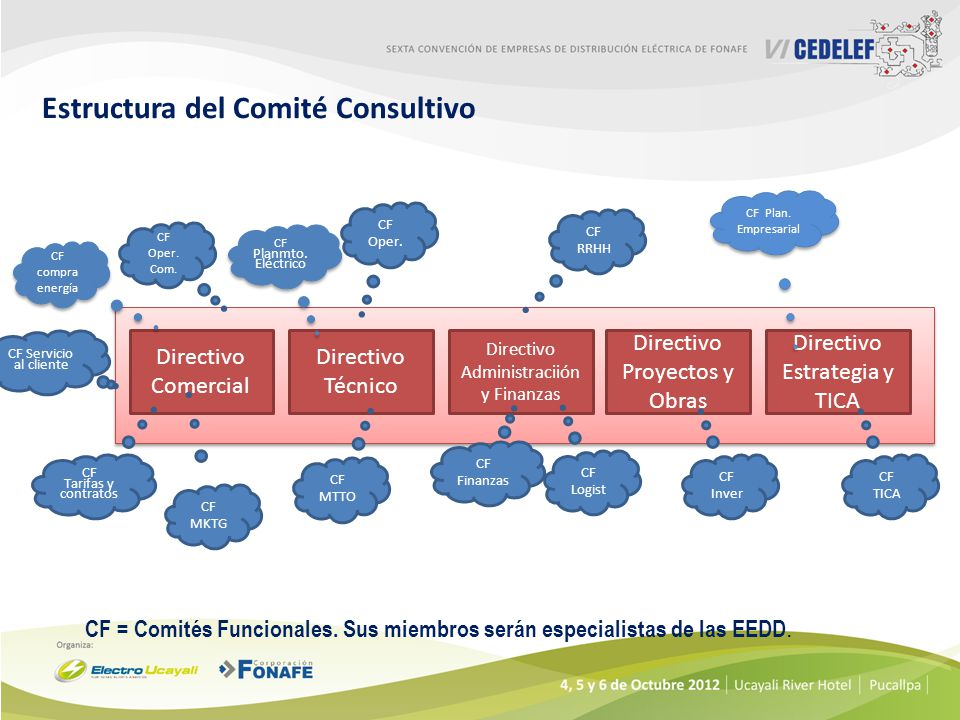 Estructura del Comité Consultivo