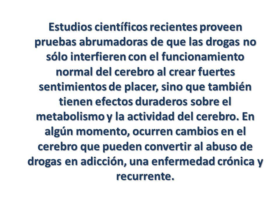 Estudios científicos recientes proveen pruebas abrumadoras de que las drogas no sólo interfieren con el funcionamiento normal del cerebro al crear fuertes sentimientos de placer, sino que también tienen efectos duraderos sobre el metabolismo y la actividad del cerebro.