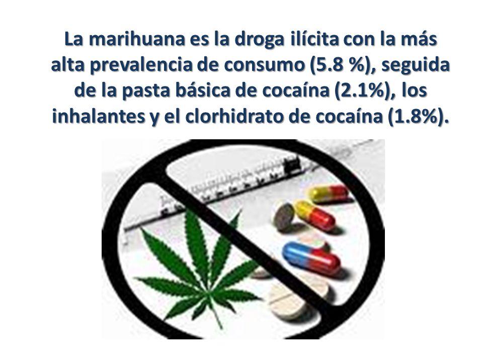 La marihuana es la droga ilícita con la más alta prevalencia de consumo (5.8 %), seguida de la pasta básica de cocaína (2.1%), los inhalantes y el clorhidrato de cocaína (1.8%).