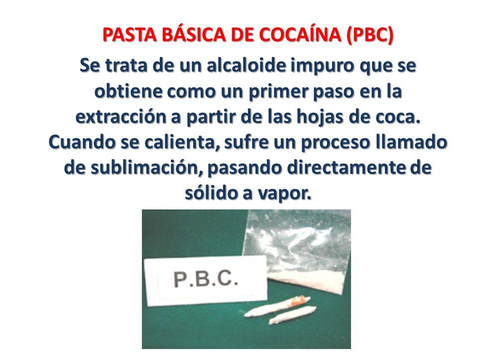 PASTA BÁSICA DE COCAÍNA (PBC)
