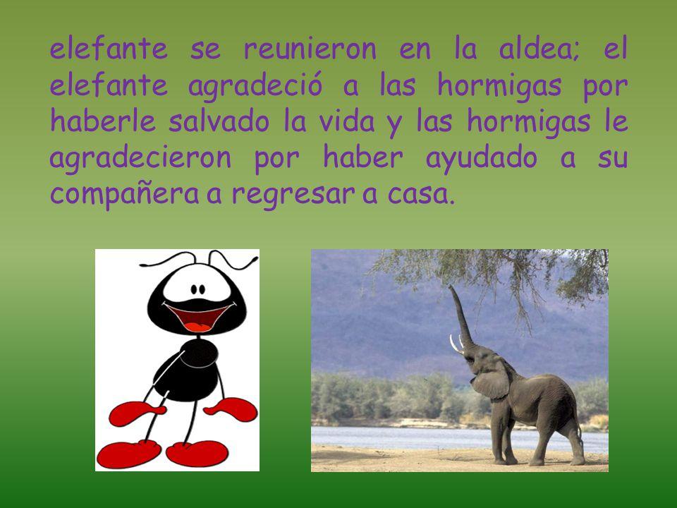 elefante se reunieron en la aldea; el elefante agradeció a las hormigas por haberle salvado la vida y las hormigas le agradecieron por haber ayudado a su compañera a regresar a casa.