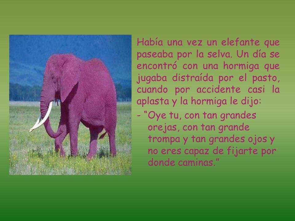 Había una vez un elefante que paseaba por la selva