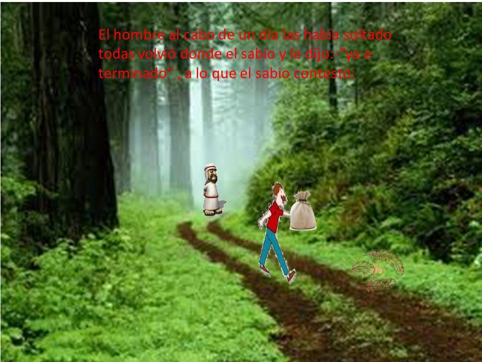 El hombre al cabo de un día las había soltado todas volvió donde el sabio y le dijo:- ya e terminado , a lo que el sabio contestó: