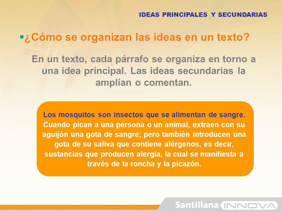 ¿Cómo se organizan las ideas en un texto