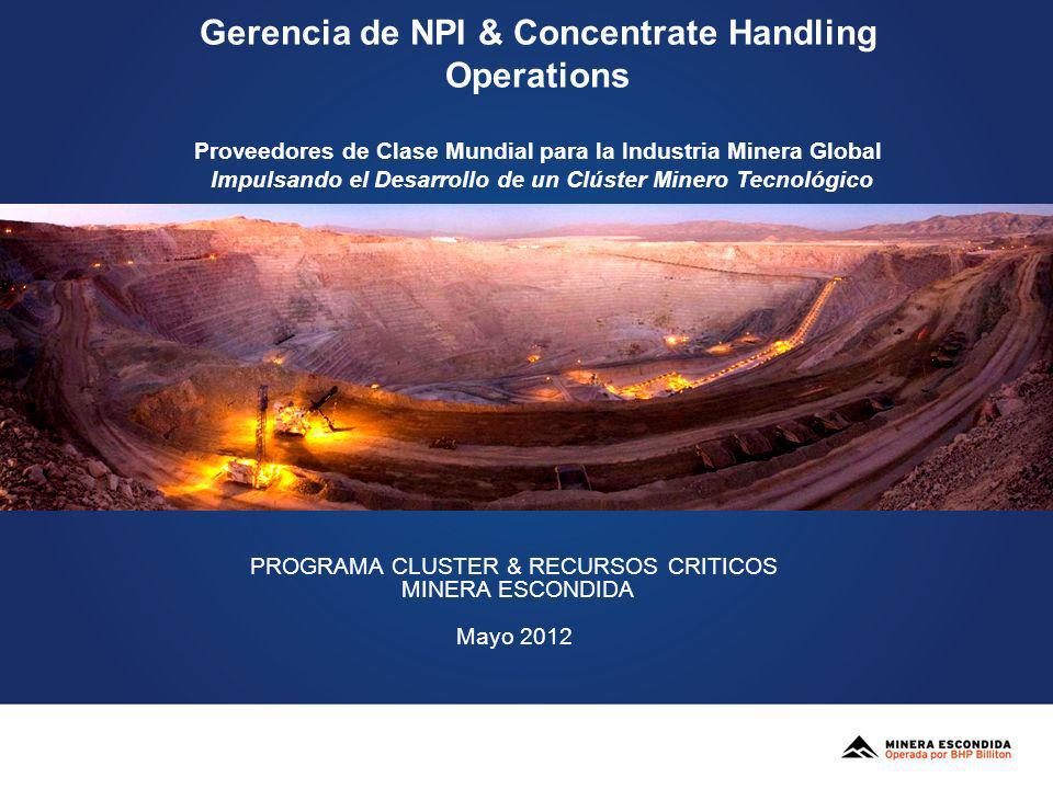 Gerencia de NPI & Concentrate Handling Operations