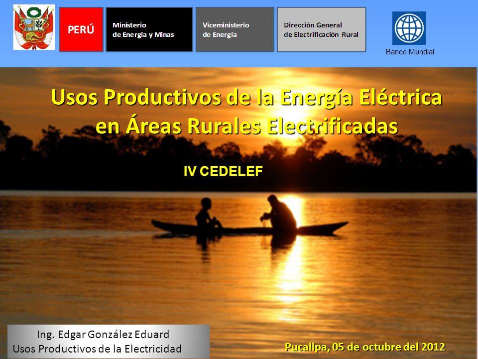 Banco Mundial Usos Productivos de la Energía Eléctrica en Áreas Rurales Electrificadas. IV CEDELEF.
