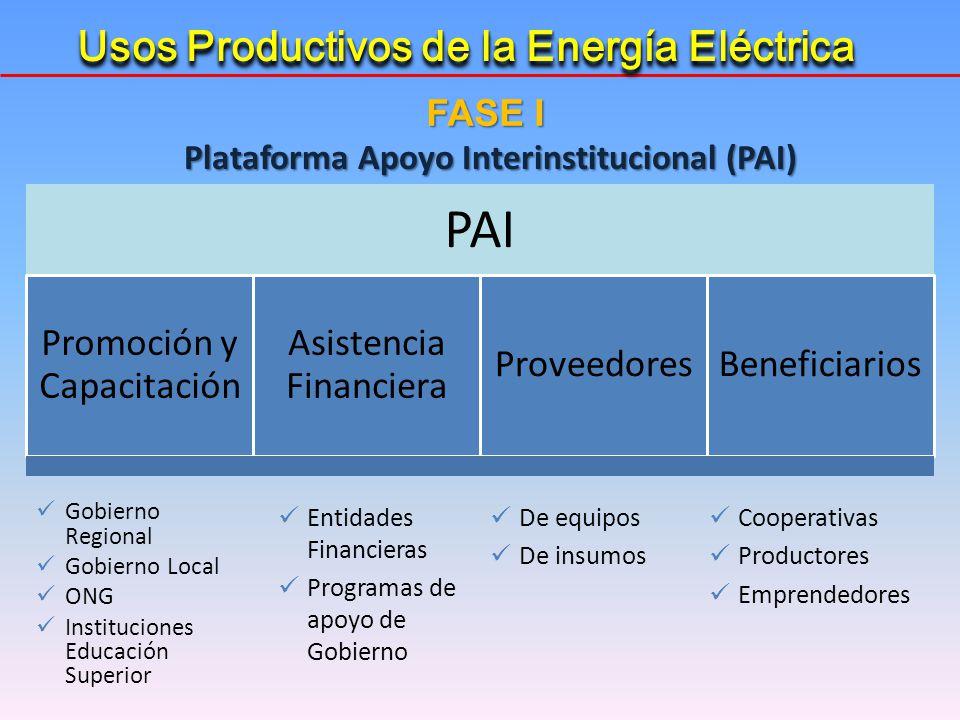 Plataforma Apoyo Interinstitucional (PAI)