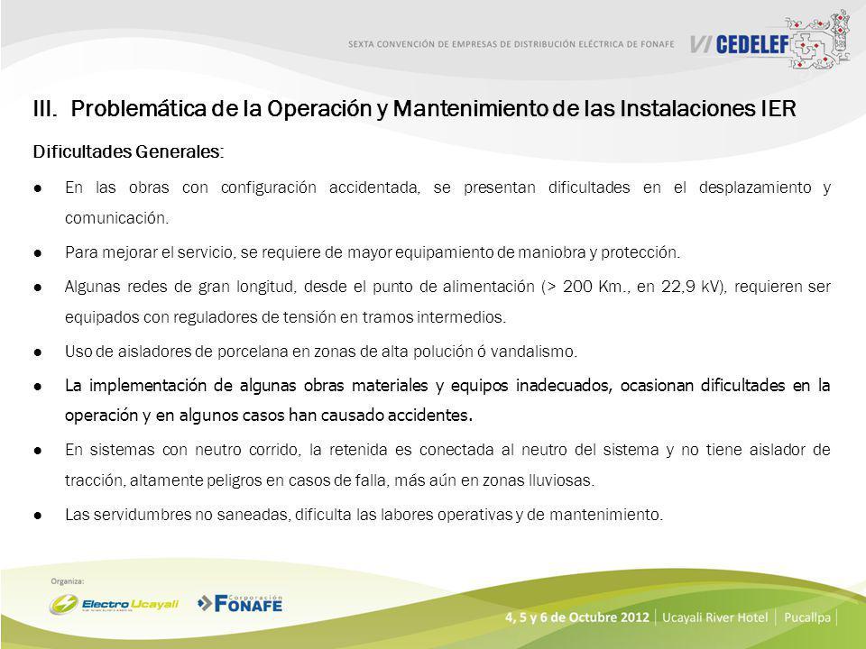 Problemática de la Operación y Mantenimiento de las Instalaciones IER