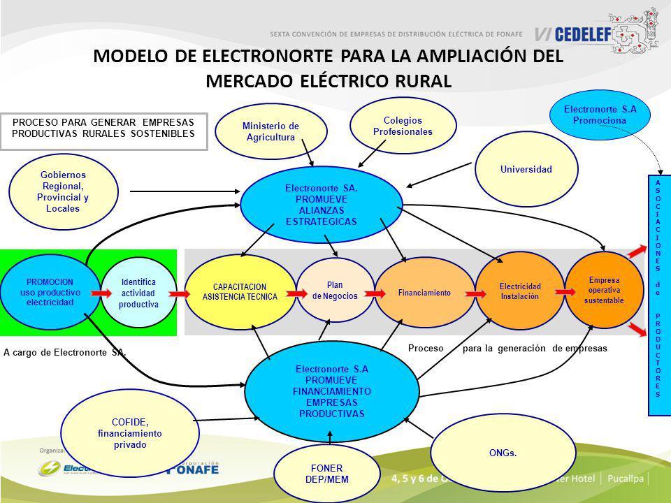 Modelo de ELECTRONORTE para la ampliación del mercado eléctrico rural