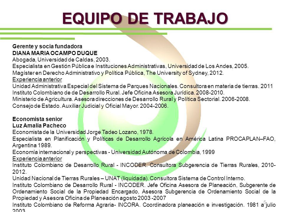 EQUIPO DE TRABAJO Gerente y socia fundadora DIANA MARIA OCAMPO DUQUE