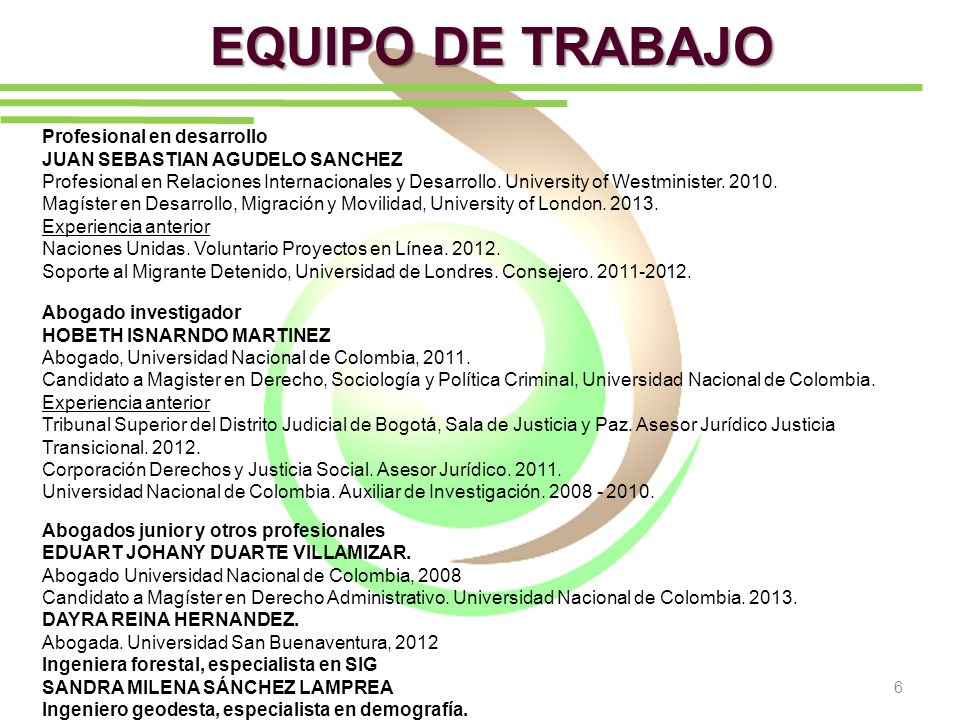 EQUIPO DE TRABAJO Profesional en desarrollo