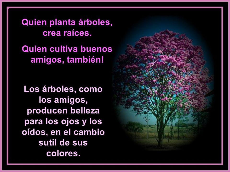 Quien planta árboles, crea raíces.