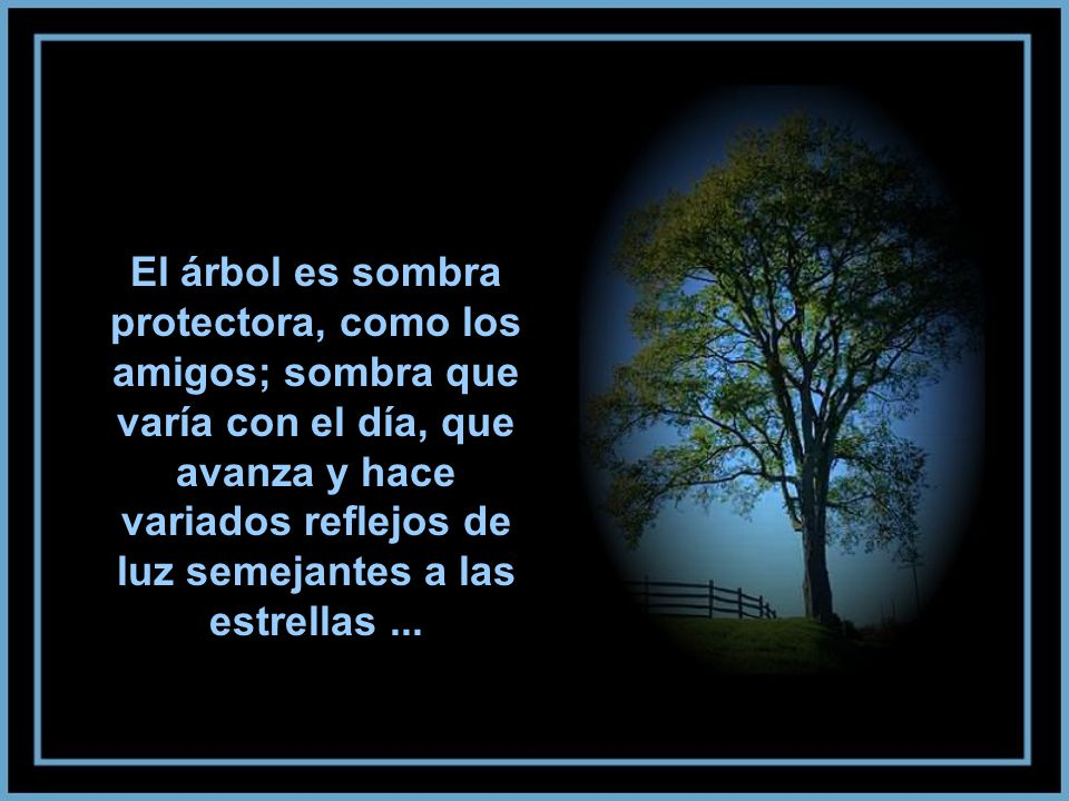 El árbol es sombra protectora, como los amigos; sombra que varía con el día, que avanza y hace variados reflejos de luz semejantes a las estrellas ...