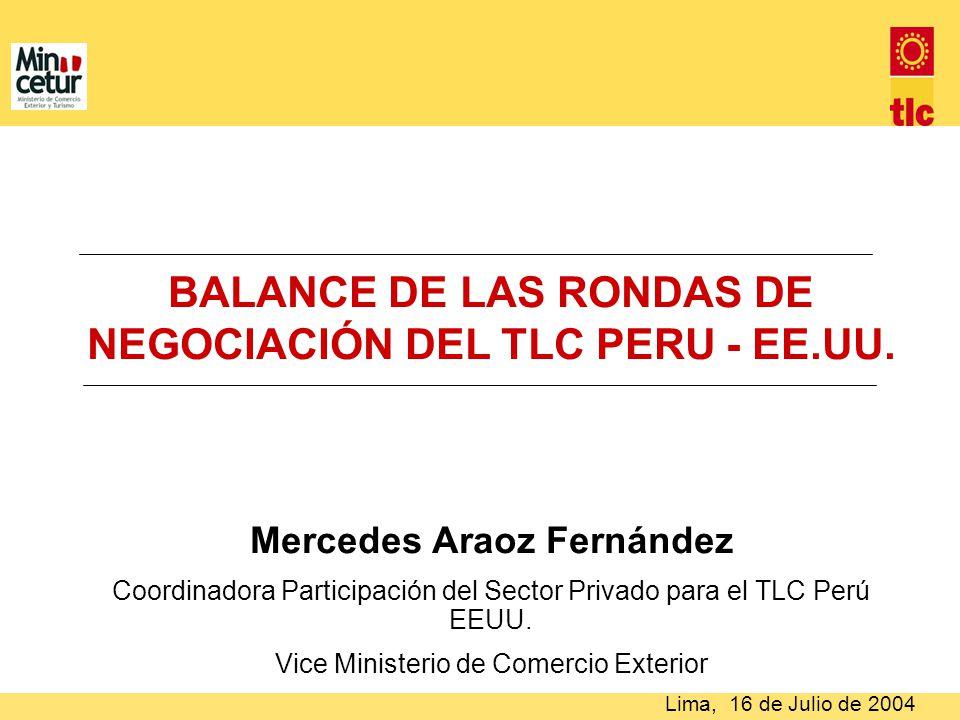 BALANCE DE LAS RONDAS DE NEGOCIACIÓN DEL TLC PERU - EE.UU.