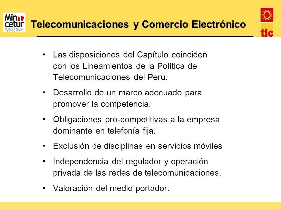 Telecomunicaciones y Comercio Electrónico