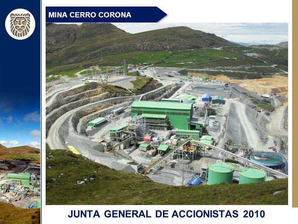 JUNTA GENERAL DE ACCIONISTAS 2010