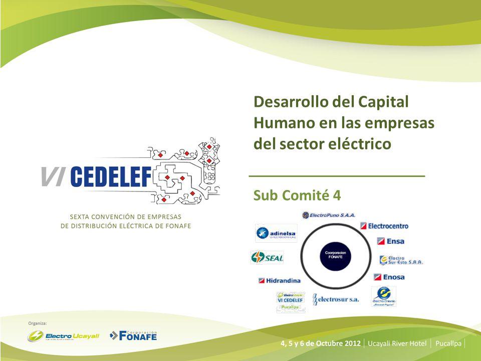 Desarrollo del Capital Humano en las empresas del sector eléctrico