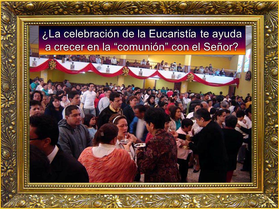 ¿La celebración de la Eucaristía te ayuda a crecer en la comunión con el Señor