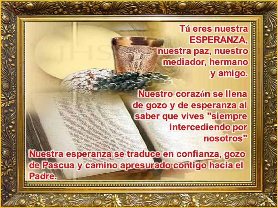 Tú eres nuestra ESPERANZA, nuestra paz, nuestro mediador, hermano y amigo.