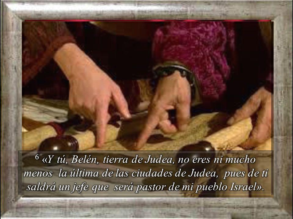 6 «Y tú, Belén, tierra de Judea, no eres ni mucho menos la última de las ciudades de Judea, pues de ti saldrá un jefe que será pastor de mi pueblo Israel».