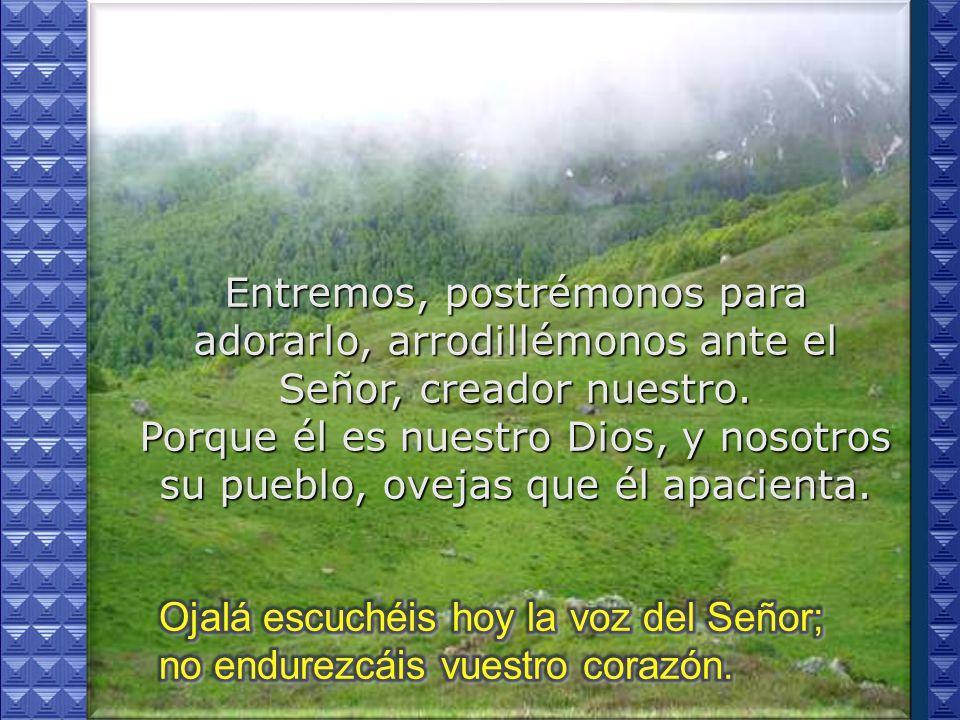 Entremos, postrémonos para adorarlo, arrodillémonos ante el Señor, creador nuestro. Porque él es nuestro Dios, y nosotros su pueblo, ovejas que él apacienta.