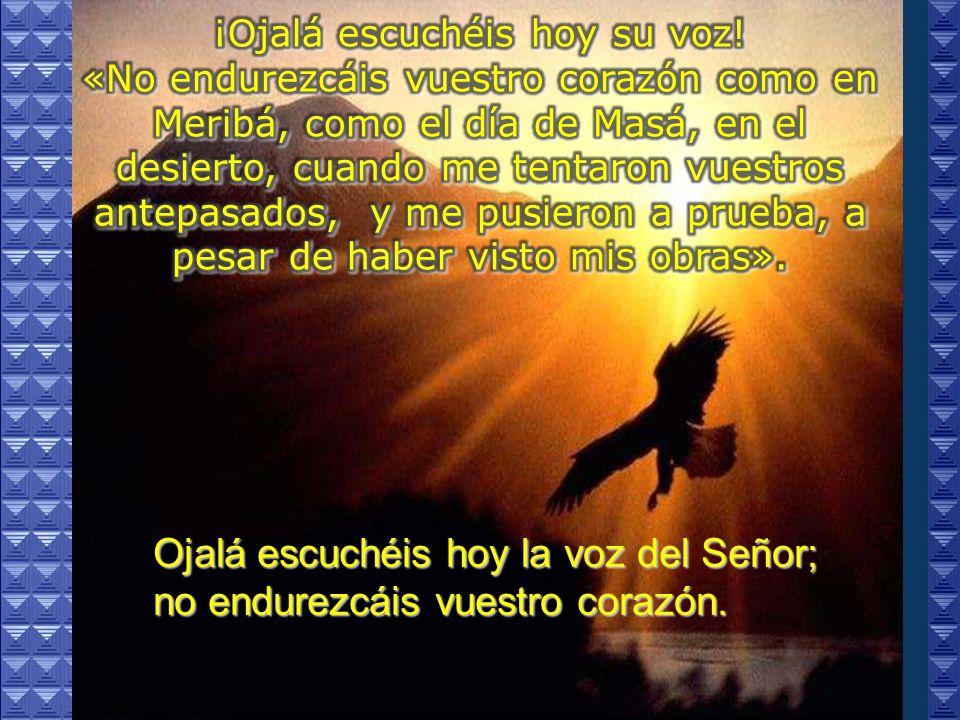 Ojalá escuchéis hoy la voz del Señor; no endurezcáis vuestro corazón.