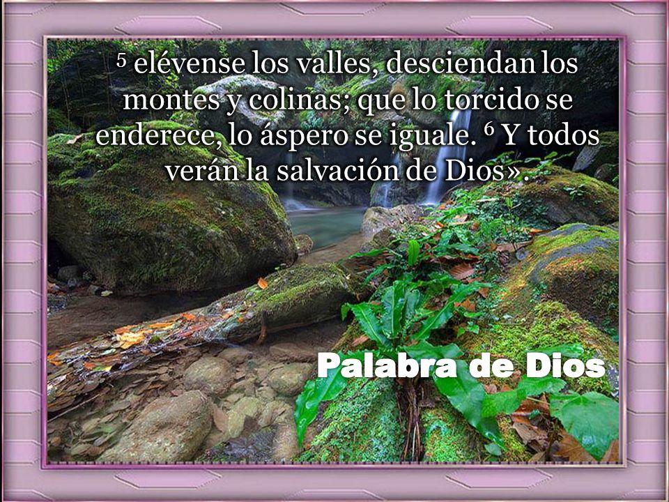 5 elévense los valles, desciendan los montes y colinas; que lo torcido se enderece, lo áspero se iguale. 6 Y todos verán la salvación de Dios».