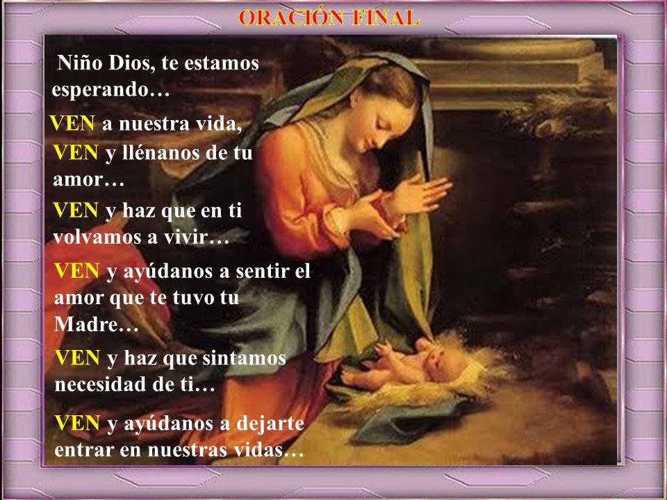 ORACIÓN FINAL Niño Dios, te estamos esperando… VEN a nuestra vida, VEN y llénanos de tu amor… VEN y haz que en ti volvamos a vivir…