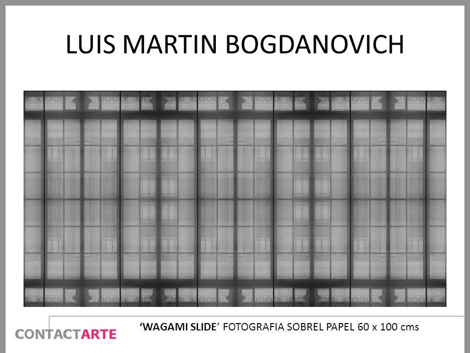 LUIS MARTIN BOGDANOVICH