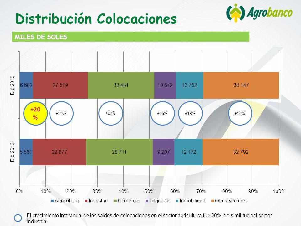 Distribución Colocaciones