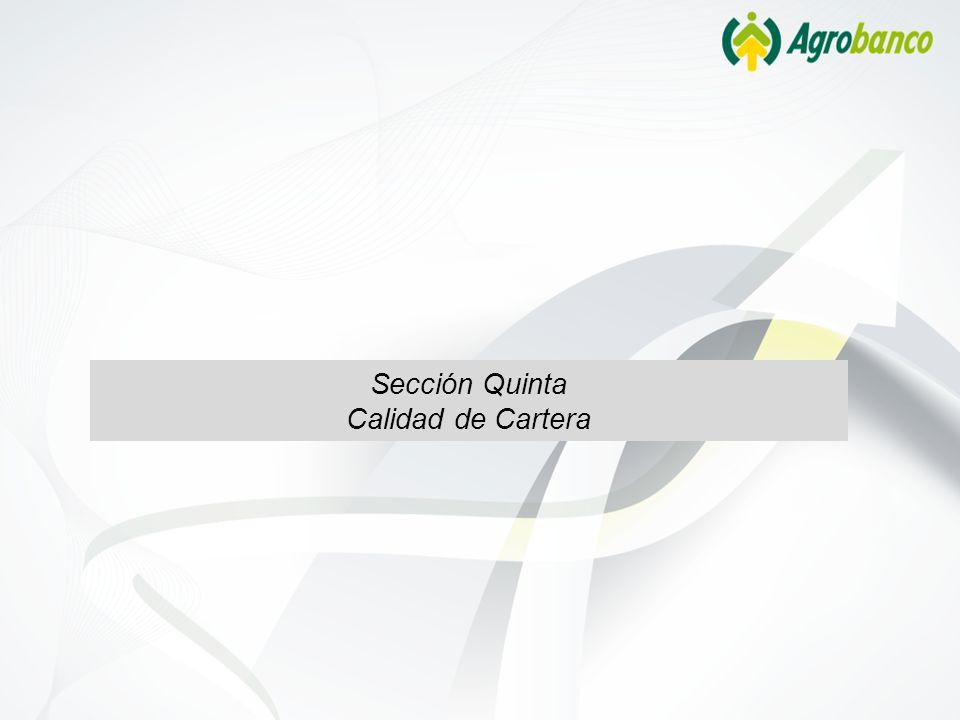 Sección Quinta Calidad de Cartera