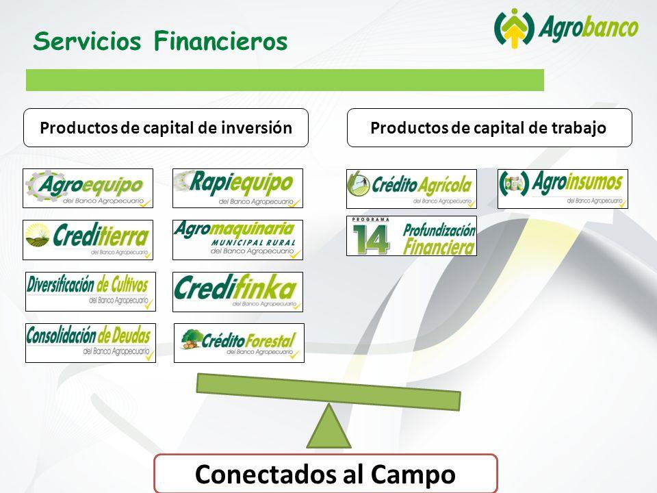 Productos de capital de inversión Productos de capital de trabajo