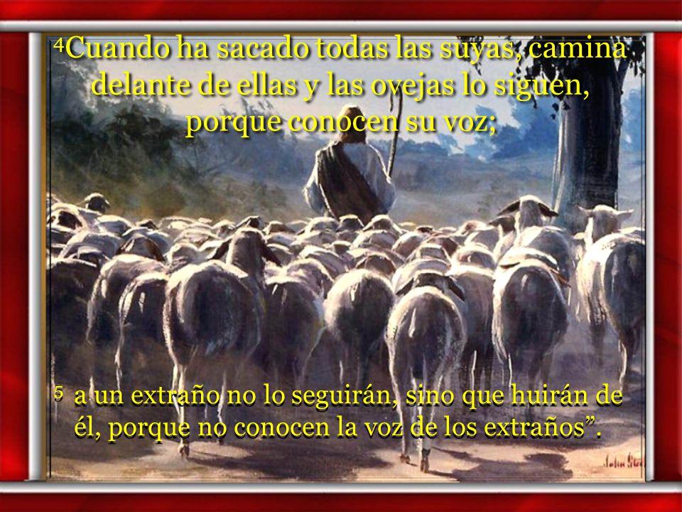 4Cuando ha sacado todas las suyas, camina delante de ellas y las ovejas lo siguen, porque conocen su voz;