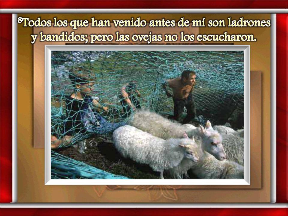 8Todos los que han venido antes de mí son ladrones y bandidos; pero las ovejas no los escucharon.