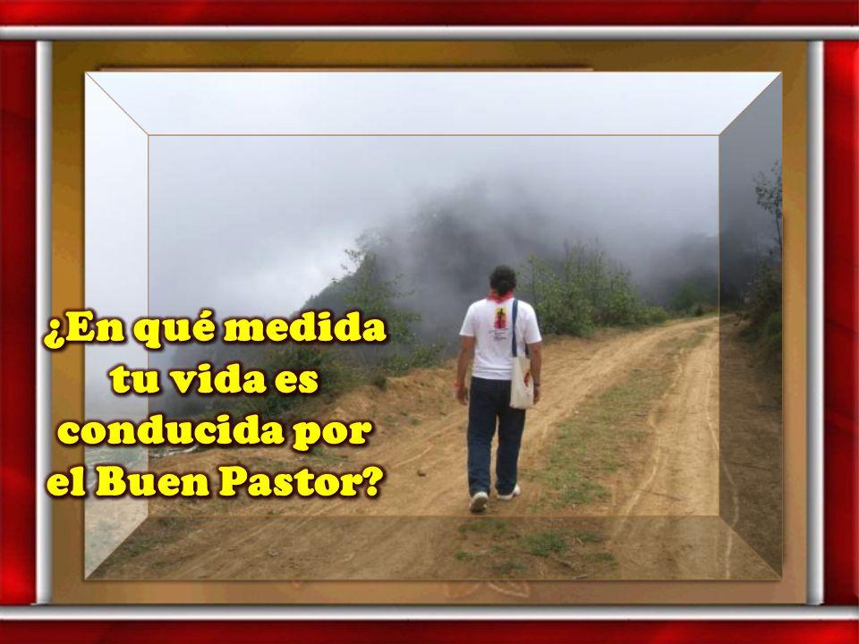 ¿En qué medida tu vida es conducida por el Buen Pastor