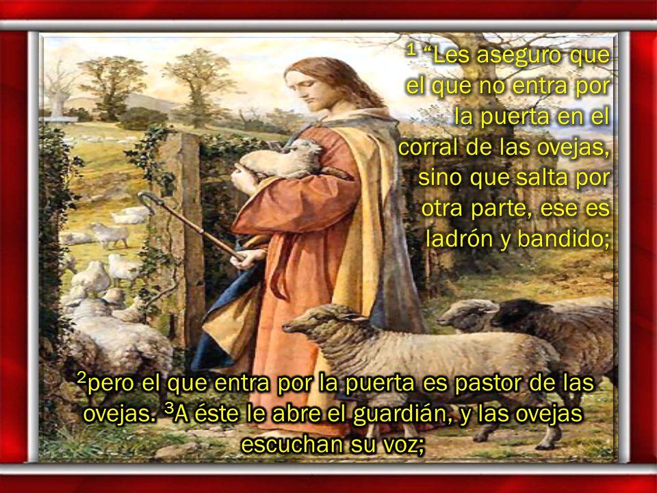 1 Les aseguro que el que no entra por la puerta en el corral de las ovejas, sino que salta por otra parte, ese es ladrón y bandido;