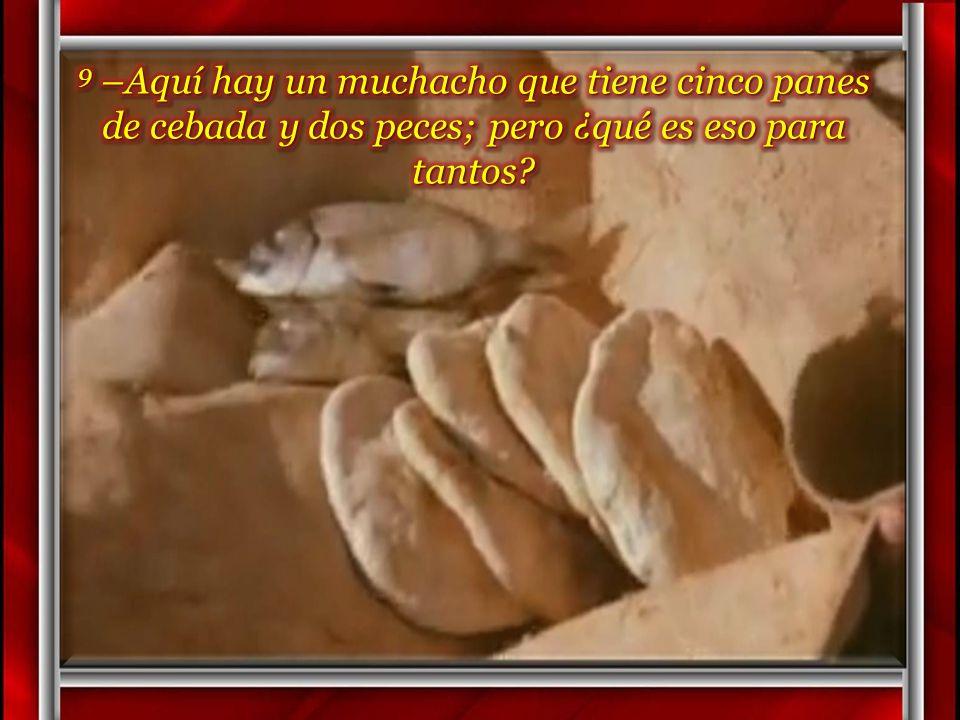 9 –Aquí hay un muchacho que tiene cinco panes de cebada y dos peces; pero ¿qué es eso para tantos