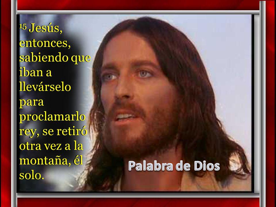 15 Jesús, entonces, sabiendo que iban a llevárselo para proclamarlo rey, se retiró otra vez a la montaña, él solo.
