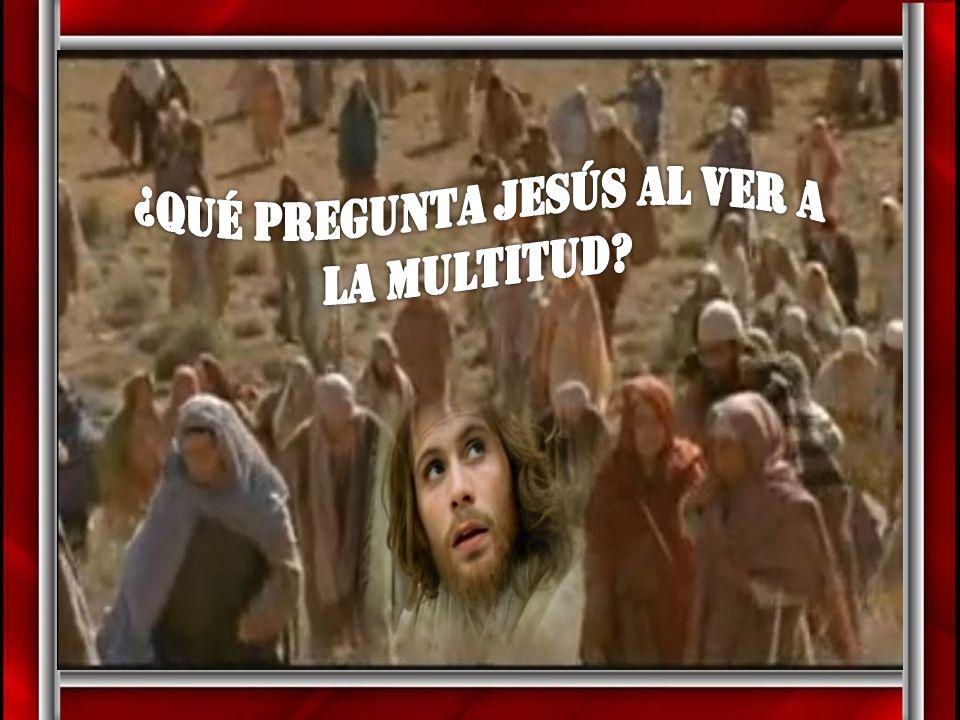 ¿Qué pregunta Jesús al ver a la multitud