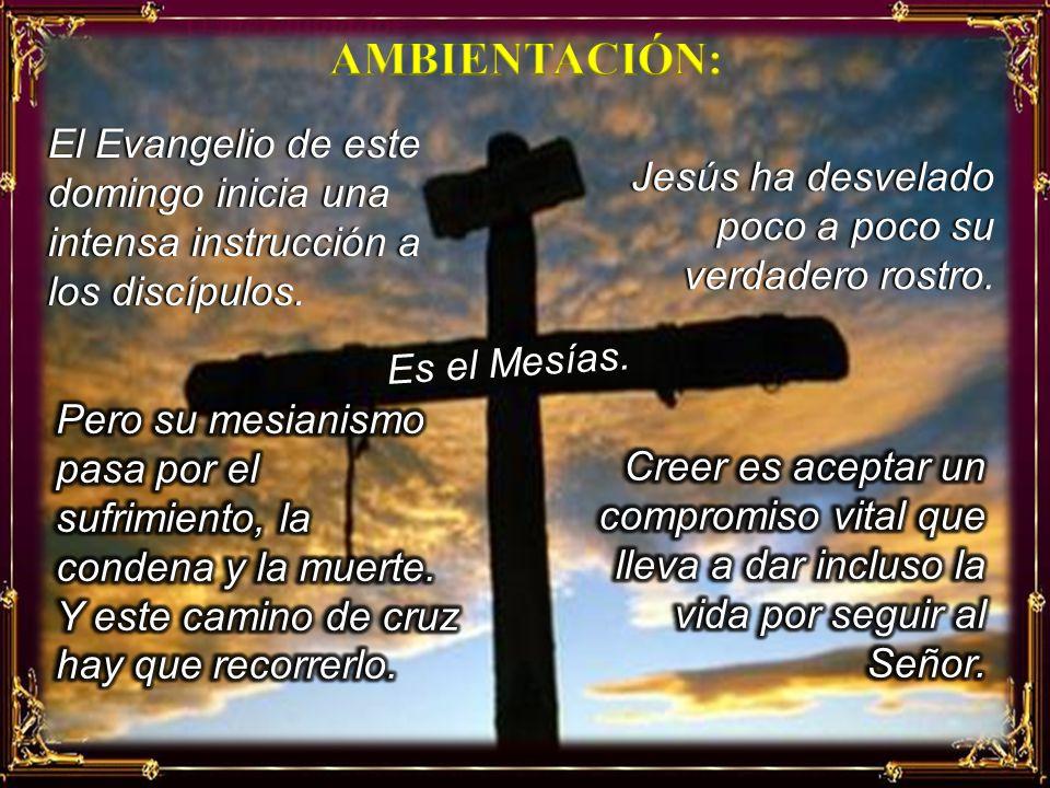 AMBIENTACIÓN: El Evangelio de este domingo inicia una intensa instrucción a los discípulos. Jesús ha desvelado poco a poco su verdadero rostro.
