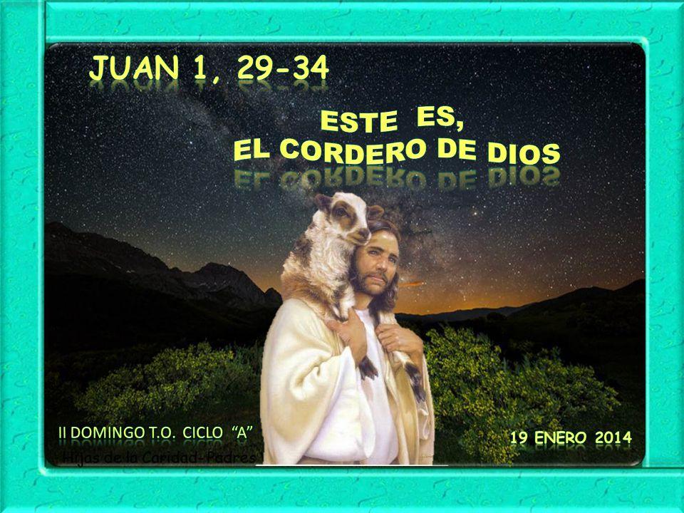 Juan 1, 29-34 Este es, EL cordero de Dios II Domingo T.O. Ciclo A