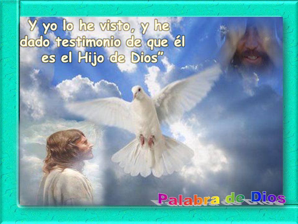 Y yo lo he visto, y he dado testimonio de que él es el Hijo de Dios