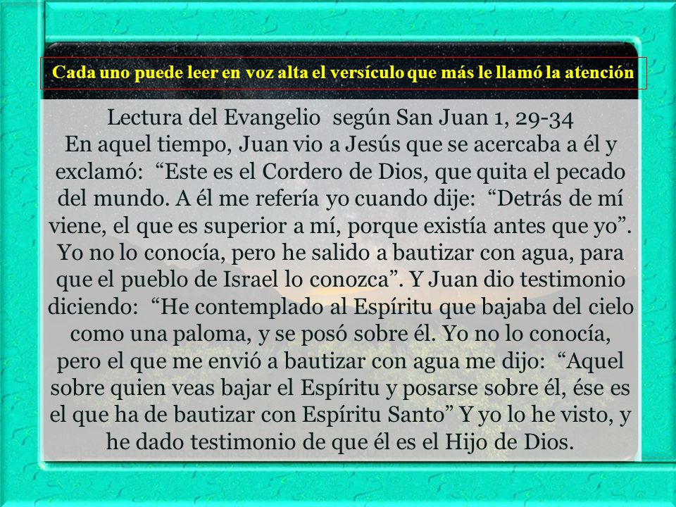 Lectura del Evangelio según San Juan 1, 29-34