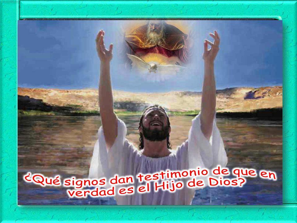 ¿Qué signos dan testimonio de que en verdad es el Hijo de Dios