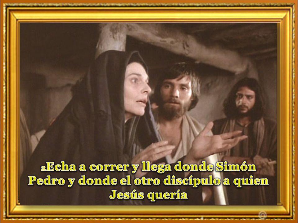 2Echa a correr y llega donde Simón Pedro y donde el otro discípulo a quien Jesús quería